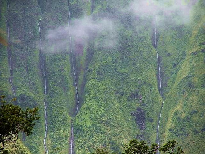 Foto de  Dirt Road to Blue Hole past Jurassic Gate, Kauai Hawaii